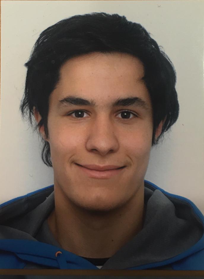 FERRAN TORRES SANCHEZ